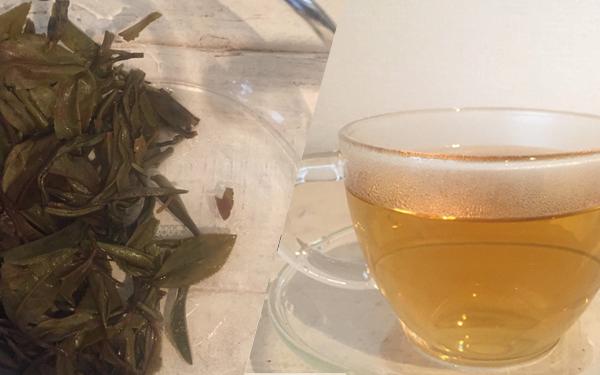 茶殻と茶色